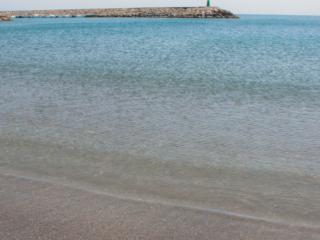 Marina del Castillo | Puerto de la Duquesa